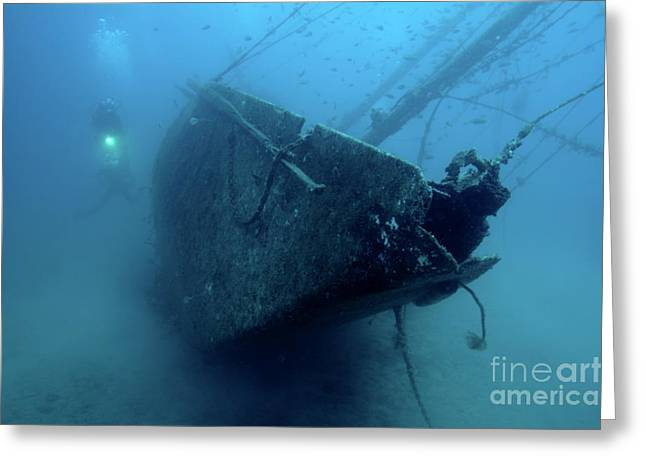 Scuba Diving Greeting Cards - Scuba diver exploring  Le Voilier Shipwreck Greeting Card by Sami Sarkis