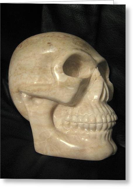 Alabaster Sculptures Greeting Cards - Scully Greeting Card by Donovan  Hettich
