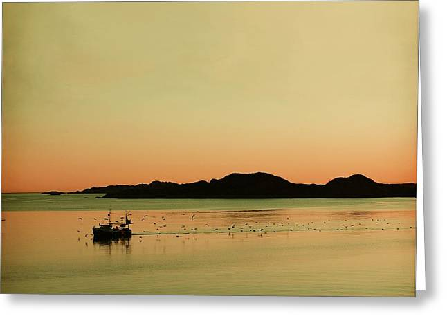 Sea after sunset Greeting Card by Sonya Kanelstrand