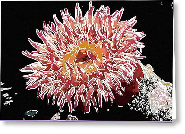 Amphiprion Clarkii Paintings Greeting Cards - Sea anemone  Greeting Card by Lanjee Chee