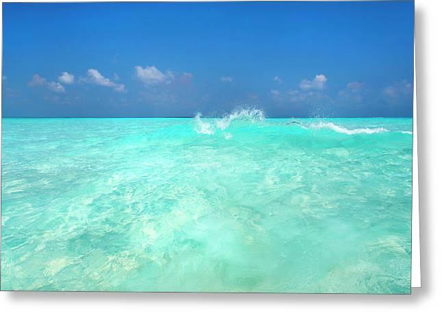 Sea Breeze Greeting Card by Sean Davey