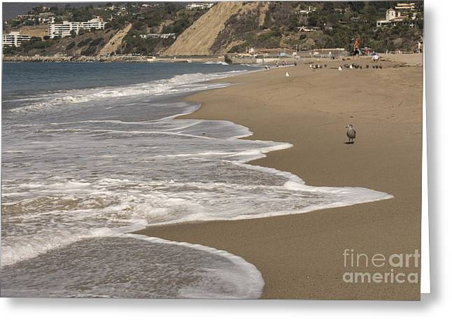 Beach Greeting Cards - Sea Foam Greeting Card by David Bearden