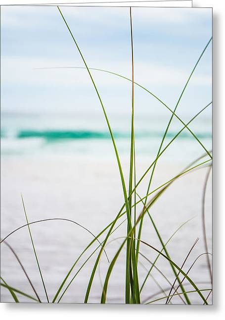 Blue Green Wave Greeting Cards - Sea Grass Greeting Card by Shelby  Young