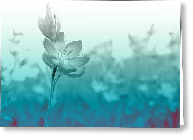 Bloom Greeting Cards - Sea Green Haze Greeting Card by Barbara  White