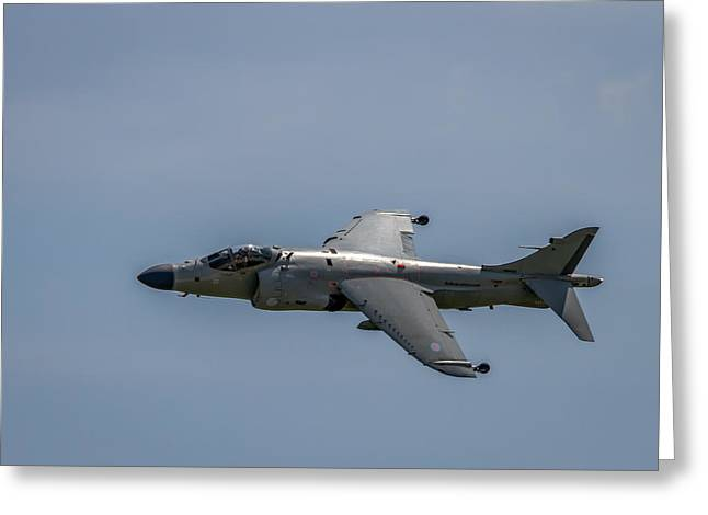 Rockford Greeting Cards - Sea Harrier Greeting Card by Mike Burgquist
