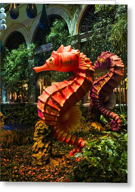 Ceasars Palace Greeting Cards - Sea Horse - Bellagio Conservatory - Las Vegas Nevada Greeting Card by Jon Berghoff