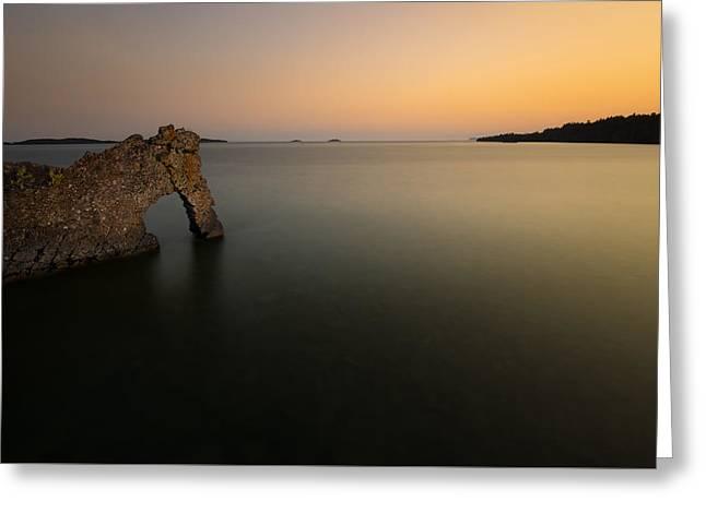 Summer Storm Greeting Cards - Sea Lion basink on Summer Nigh Sunsets glow Greeting Card by Jakub Sisak