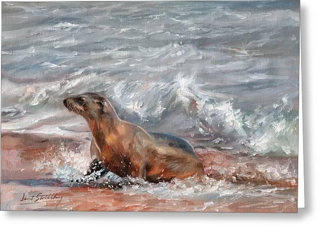 Sea Lion Greeting Card by David Stribbling