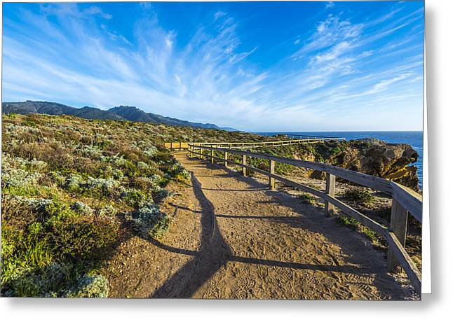 Point Lobos Reserve Greeting Cards - Sea Lion Point Trail Greeting Card by Joseph S Giacalone