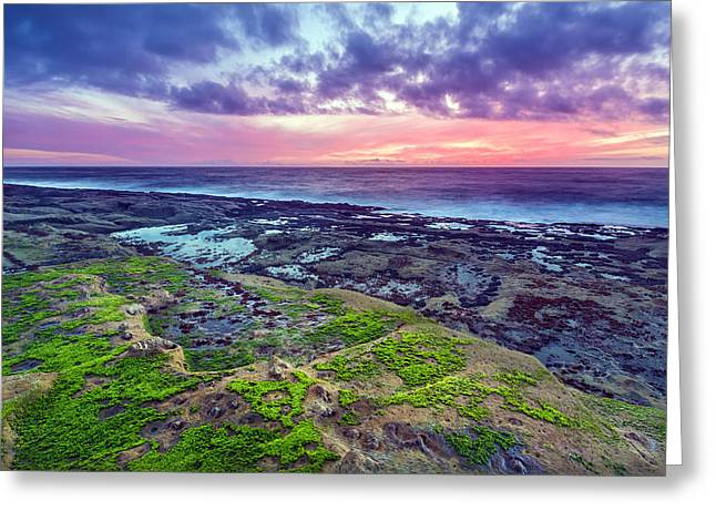 Sea Moss Sunset Greeting Card by Robert Bynum