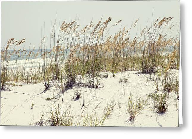 Sea Oats Greeting Cards - Sea Oats and White Sands Greeting Card by Toni Hopper