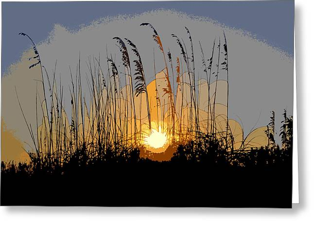 Oats Digital Greeting Cards - Sea oats at sunset Greeting Card by David Lee Thompson
