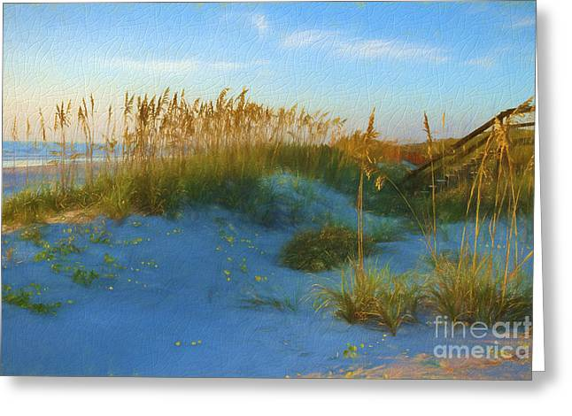 Beach Photography Greeting Cards - Sea Oats on Cracked Porcelain Greeting Card by C W Hooper