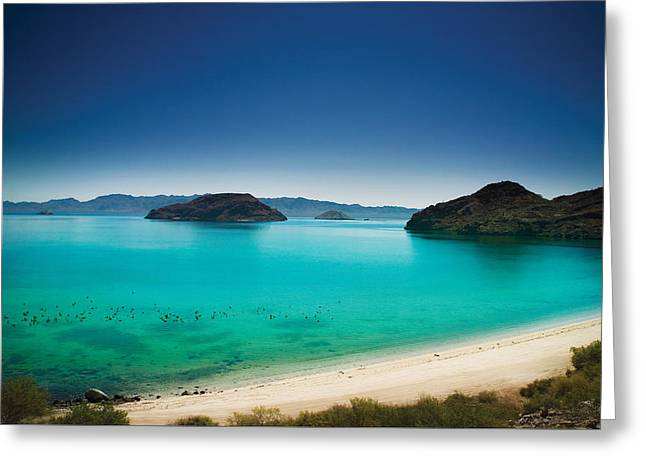 Sea Of Cortez Greeting Cards - Sea of Cortez Greeting Card by Marcel Kaiser