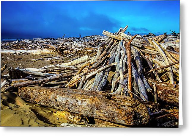 Sea Of Driftwood Greeting Card by Garry Gay