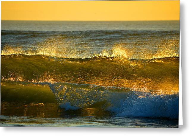 Aquatic Greeting Cards - Sea of Gold Greeting Card by Dianne Cowen