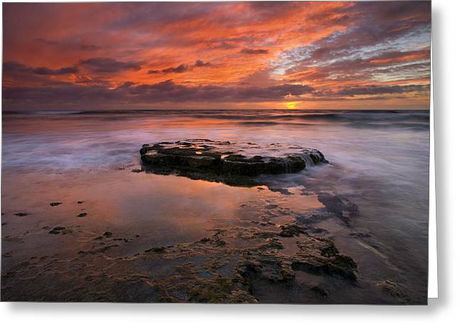 Sea Of Red Greeting Card by Mike  Dawson