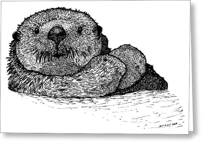 Wild Life Drawings Greeting Cards - Sea Otter Greeting Card by Karl Addison