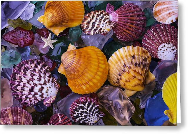 Sea Shells And Sea Glass Greeting Card by Garry Gay