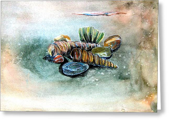 Sea Shell Drawings Greeting Cards - Sea Shells Greeting Card by Mindy Newman