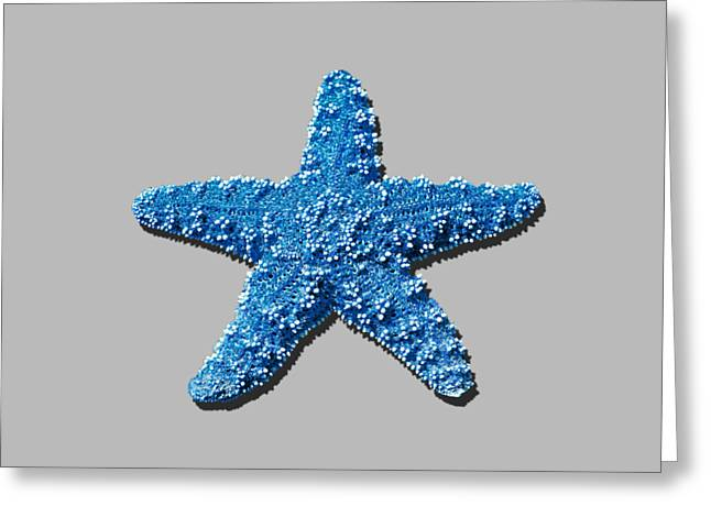 Star Fish Greeting Cards - Sea Star Medium Blue .png Greeting Card by Al Powell Photography USA