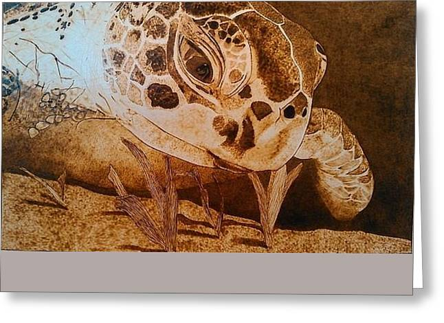 Turtle Pyrography Greeting Cards - Sea Turtle Greeting Card by Marsha Wilson