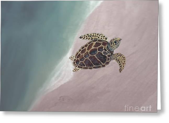 Blue Green Water Greeting Cards - Sea Turtle Tumble Greeting Card by Sabrina Wheeler
