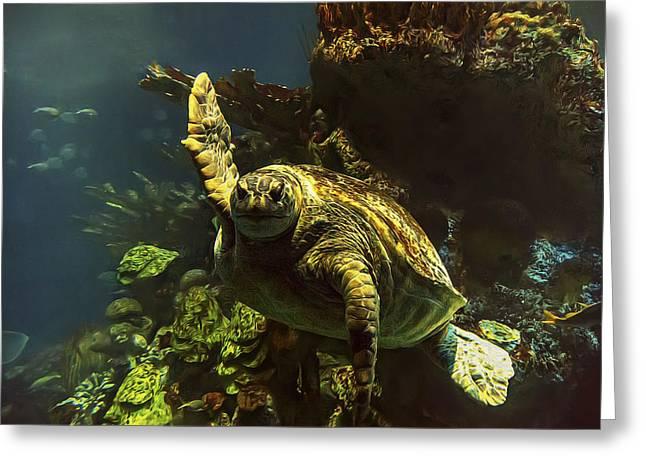 Aquarium Fish Greeting Cards - Sea Turtle Wave Greeting Card by Janet Fikar
