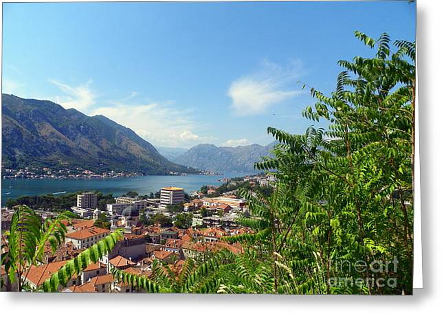 Village By The Sea Greeting Cards - Sea View from Kotor Greeting Card by Elizabeth Fontaine-Barr