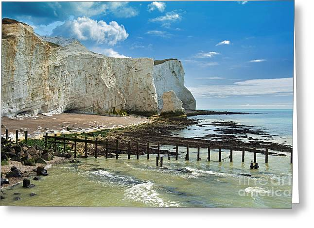 Sister Framed Prints Greeting Cards - Seaford Cliffs Greeting Card by Donald Davis
