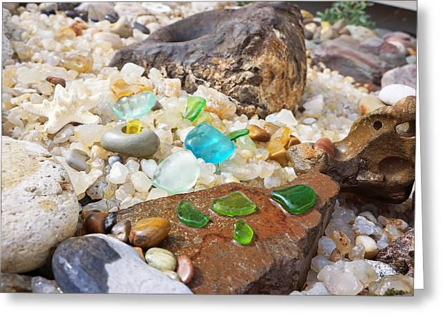 Seaglass Fossil Rocks Coastal Art Greeting Card by Baslee Troutman Fine Art Prints