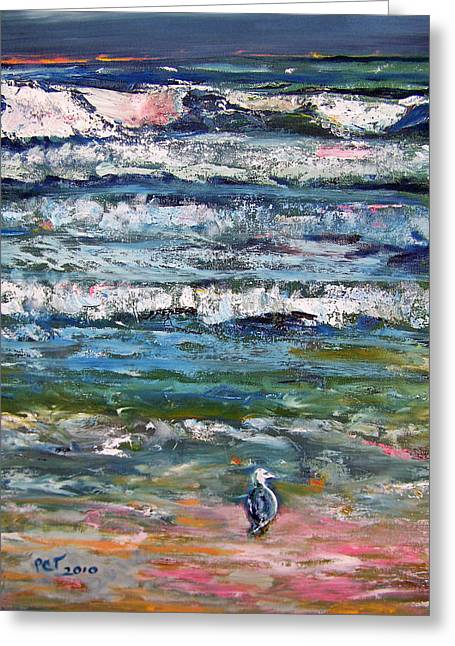 Patricia Taylor Greeting Cards - Seagull on the Beach  Greeting Card by Patricia Taylor