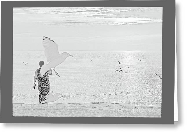 Flying Seagull Greeting Cards - Seagulls All Around Greeting Card by Ann Horn