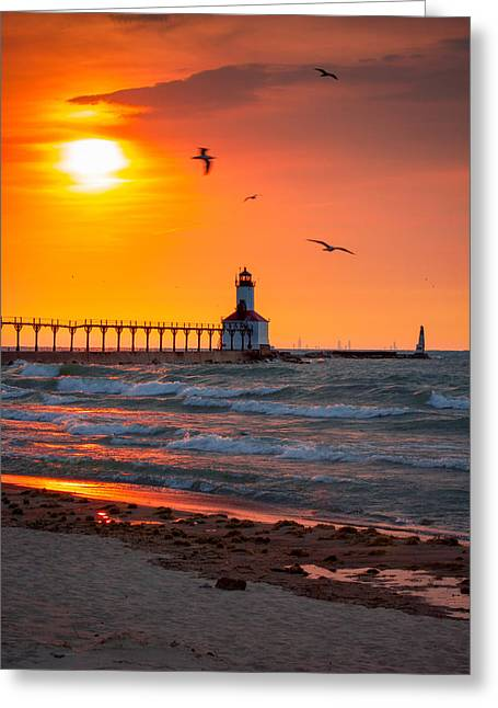 Flying Seagull Greeting Cards - Seagulls at Sunset Greeting Card by Jackie Novak