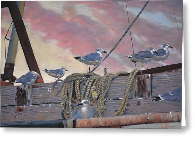 Marina Greeting Cards - Seagulls Delight Greeting Card by Christopher Reid