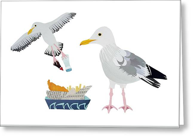Fries Drawings Greeting Cards - Seagulls Greeting Card by Isobel Barber