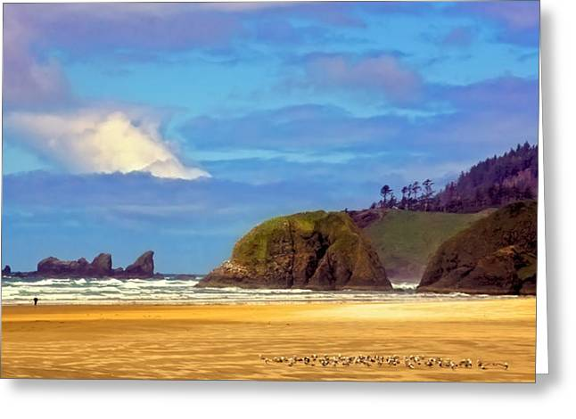 Seagulls On Cannon Beach Greeting Card by David Patterson