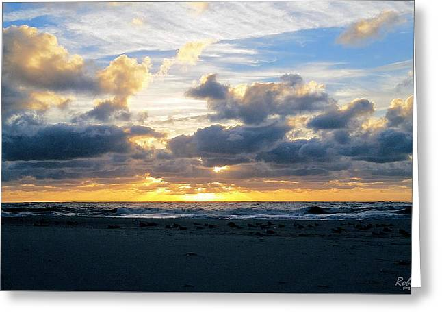 Beach Photography Greeting Cards - Seagulls on the Beach at Sunrise Greeting Card by Robert Banach