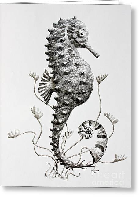 Pen And Ink Framed Prints Greeting Cards - Seahorse  Greeting Card by James Williamson