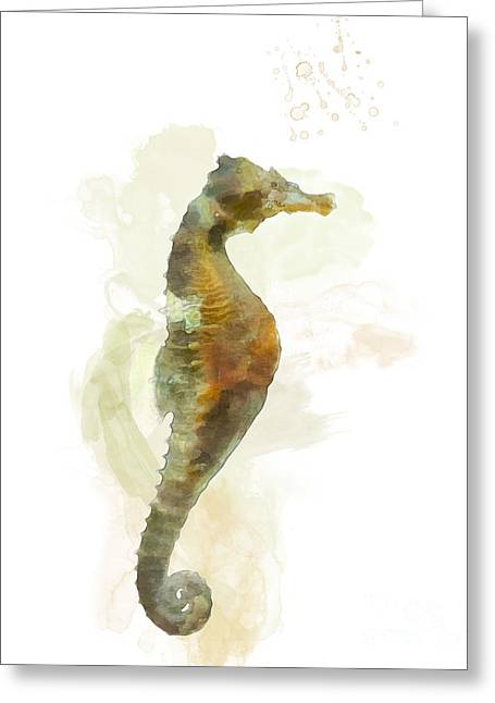 Sea Horse Greeting Cards - Seahorse Greeting Card by Peter Beckley