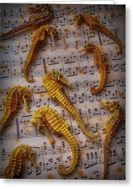 Seahorses On Sheet Music Greeting Card by Garry Gay