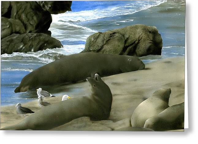 Best Sellers -  - Elephant Seals Greeting Cards - Seal Rock Greeting Card by Charles Parks