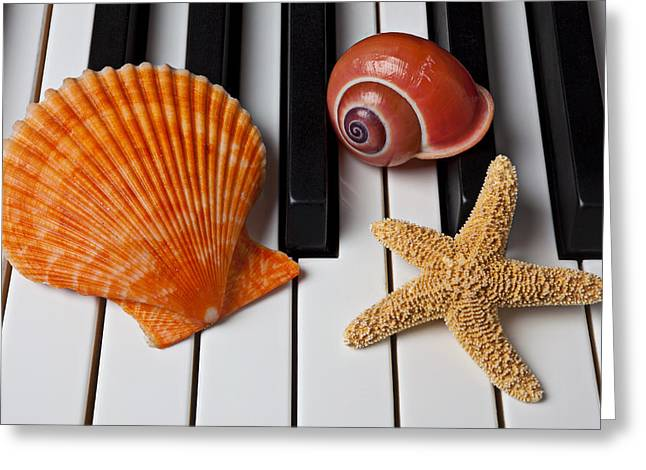Keyboard Photographs Greeting Cards - Seashell and starfish on piano Greeting Card by Garry Gay