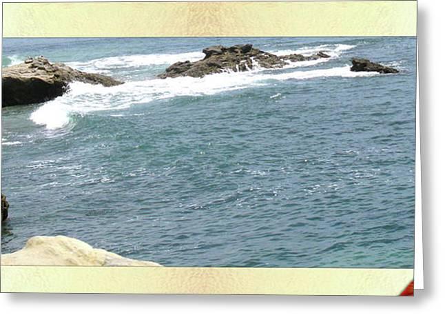 SEASHELL BY THE SEASHORE Greeting Card by Debra     Vatalaro