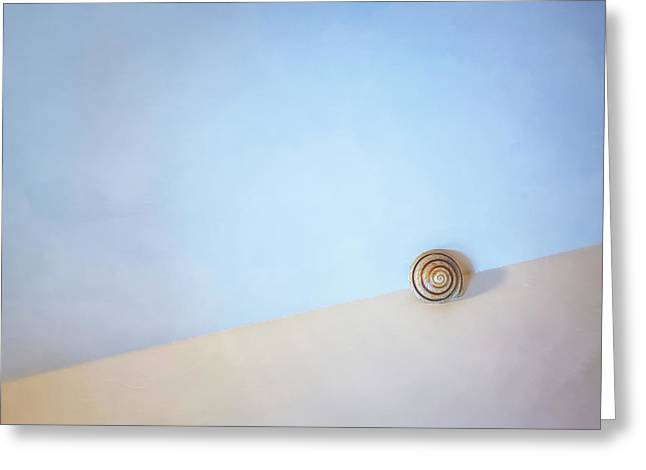 Seashell By The Seashore Greeting Card by Scott Norris