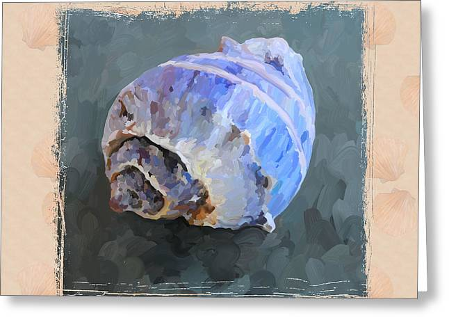 Seashell IIi Grunge With Border Greeting Card by Jai Johnson