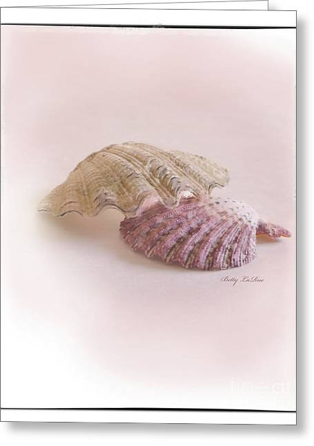 Sea Life Digital Greeting Cards - Seashell Love Greeting Card by Betty LaRue