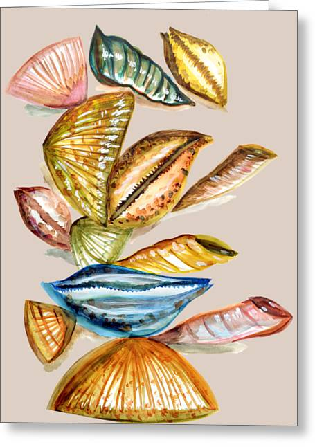 Sea Shell Drawings Greeting Cards - Seashells Greeting Card by Thecla Correya