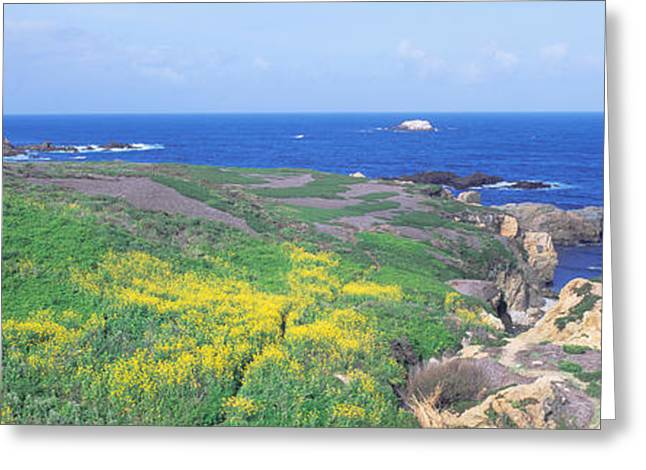 Seashore Along Highway 1 In Spring Greeting Card by Panoramic Images