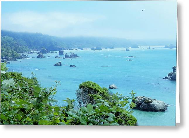 California Ocean Photography Greeting Cards - Seaside Harbor Greeting Card by Teresa St George